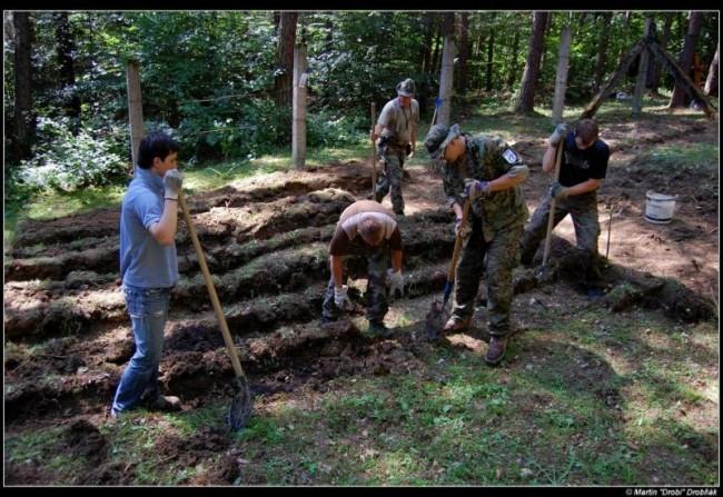 Uprava hrobovych poli